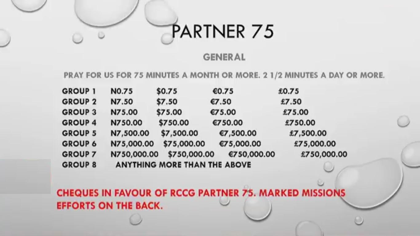 Partner 75